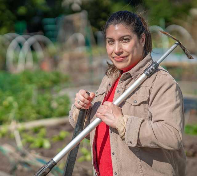 Person working in garden